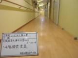 廊下 腰壁塗装