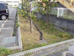 防草シート施工